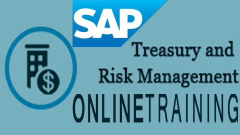 SAP Treasury & Risk Management Online Training